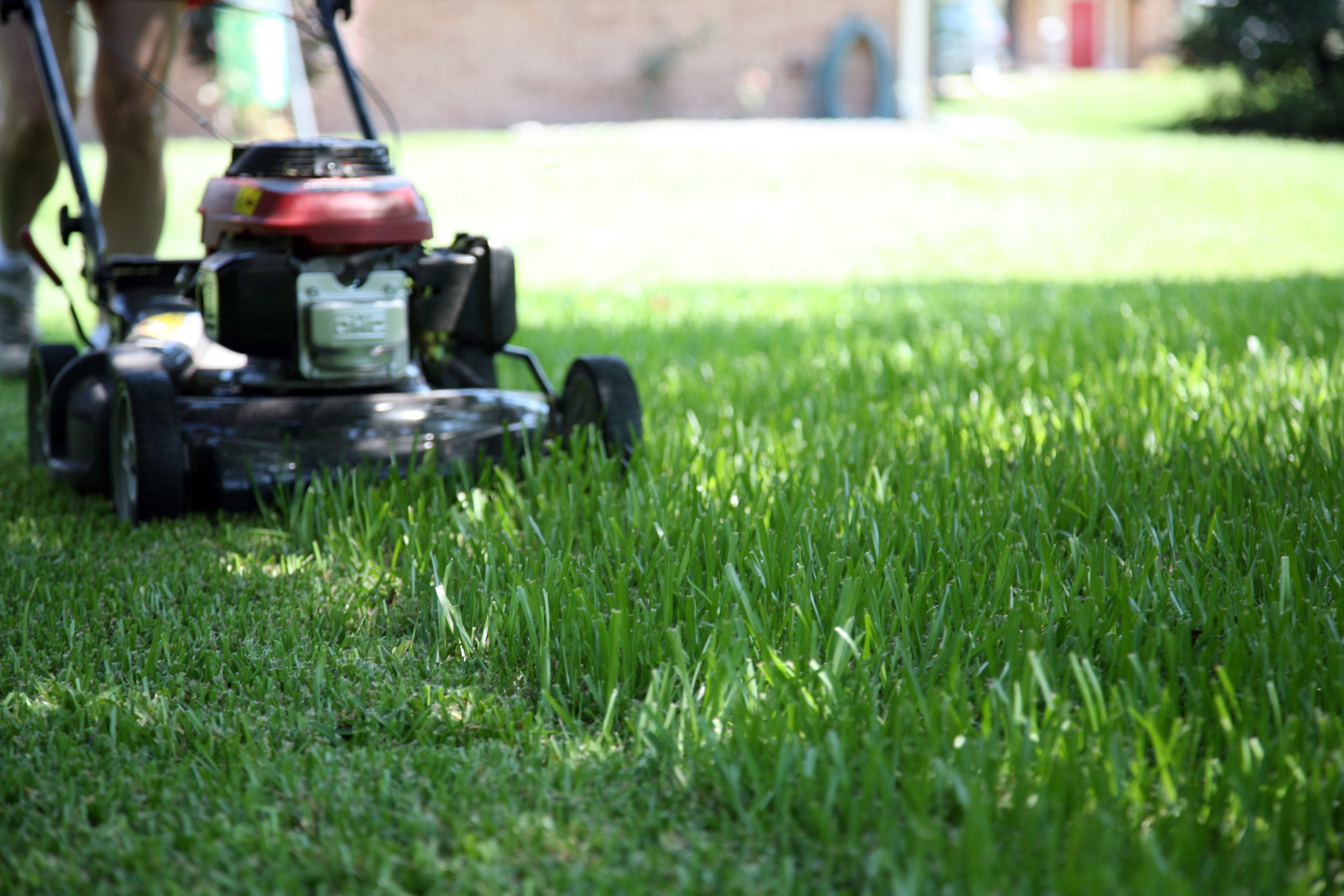 How Lawn Mower Work?